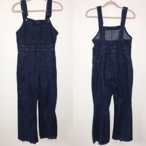 Anthropologie Pants - Anthro Pilcro denim wide leg overalls